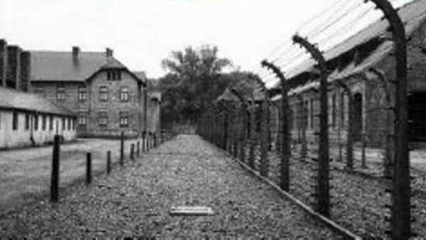 """""""Giornata della Memoria"""", si ricorda l'Olocausto anche alla Galleria Barbera"""