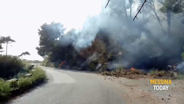 Incendi, nuovi focolai a Serro e Curcuraci