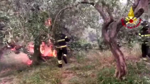 """Brucia ancora la provincia di Messina, Protezione civile: """"Molti incendi dolosi, gesti di criminalità assurda"""""""